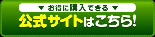 ファイラ公式サイト